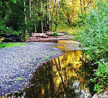 Golden reflection.....at Multnomah Falls, Oregon, outside Portland by trueblvr