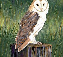 Barn Owl by EMBlairArtwork