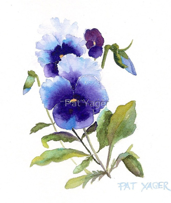 Spring Pansy by Pat Yager