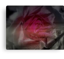 Shoreside Rose Canvas Print