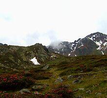 Landscape Sud Tirol by FrencyParadise