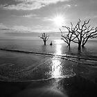 Botany Bay  by Glenn Rickborn Jr.