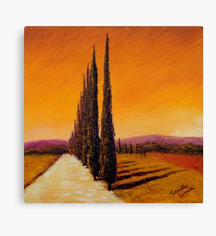 Tuscan Cypress Road Canvas Print