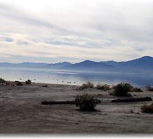 Salton Sea by osedgman