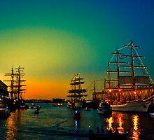 Summer evening  by LudaNayvelt