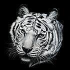 Narmada 3 by Heather Lara