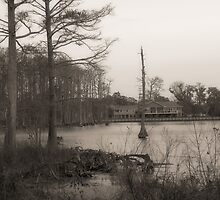the lake house by leapdaybride