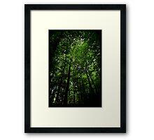 Untitled.00147 Framed Print