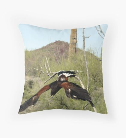 """oops"" Harris Hawk  Throw Pillow"