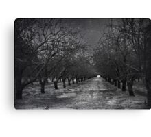 Silent and Gray Canvas Print