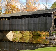 Covered Bridge by Lin Taylor