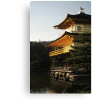 Shining Canvas Print