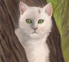 Snow-white  the cat by Kostas Koutsoukanidis
