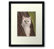 Snow-white  the cat Framed Print