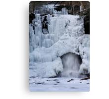 Sheldon Reynolds Falls in Winter Canvas Print