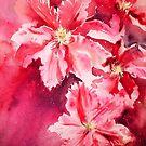 Raspberry Fizz by Ruth S Harris