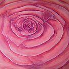 Pink Rose by auroravalentine