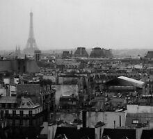 Paris, a view. by David Hayes