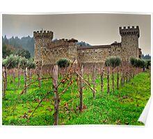 castello di vino Poster