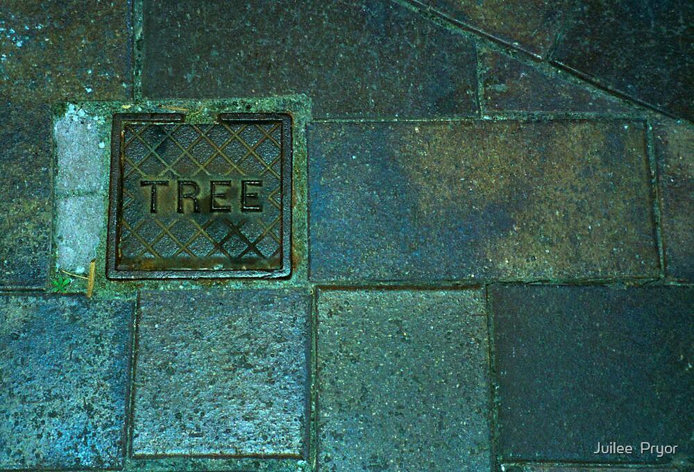 tree....? by Juilee  Pryor