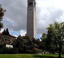 The Campanile, Berkeley by Terry Watts