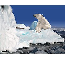 Go With The Floe Photographic Print