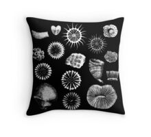Fossil Corals Throw Pillow