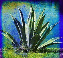 Aloha Blue by Susanne Van Hulst