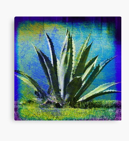Aloha Blue Canvas Print