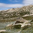 Mount Kosciuszko by Colin  Ewington