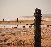 Winchelsea Beach - East Sussex by Andre Gascoigne