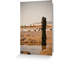 Winchelsea Beach - East Sussex Greeting Card