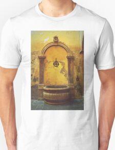 Siena, Tuscany, Italy - peeling paint T-Shirt