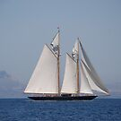 Sailing ship by VperVioletta