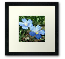 Two Blue Twins Framed Print