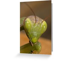 Stage whisper ! Greeting Card