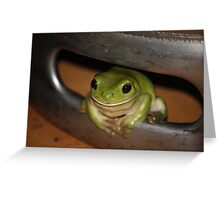 Green Frog in Beer Barrel Greeting Card