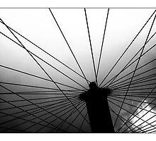 Wheel..  by Natali Burduli