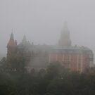 Morning mist in Ksiaz ... by JerzyS