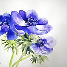 Singing the Blues by Ruth S Harris