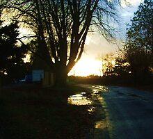 Sunset at Old Crawley Road  by Gemmka