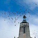 Flying Over by Oleksii Rybakov