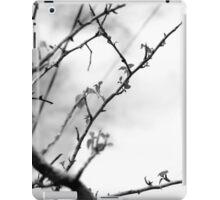 Naked Stick iPad Case/Skin