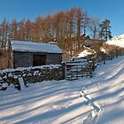 Howgill Lane in winter by David Barrett