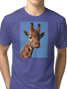 Giraffe Cushion Tri-blend T-Shirt