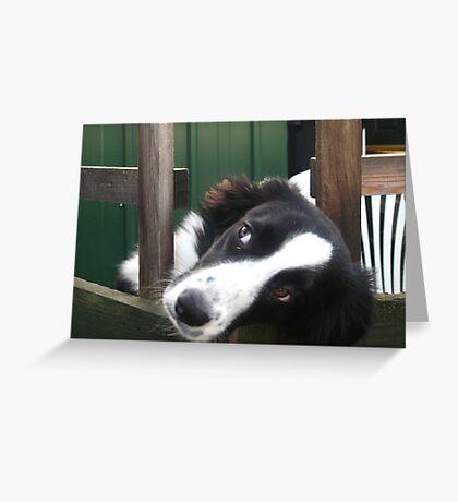 Tina Too Greeting Card