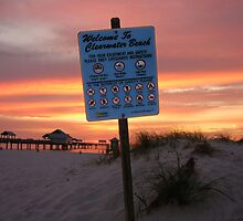 Welcome To Clearwater Beach by Rachael Rose