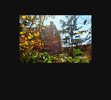 Abandoned House in the Autumn Sunlight Unisex T-Shirt