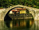 Single span of il Ponte del Diavolo, Lucca, Tuscany, Italy by Andrew Jones