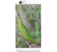 Grasshopper No.2 iPhone Case/Skin